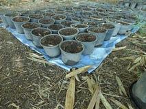 Баки с почвой стоковые фото