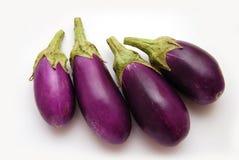 баклажаны младенца пурпуровые Стоковое Фото