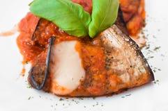 баклажан свертывает томат соуса Стоковое фото RF