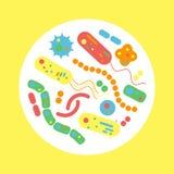 Бактериальный микроорганизм в круге иллюстрация вектора
