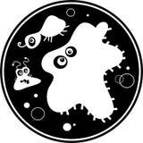 бактерии Стоковое Изображение