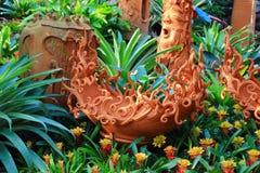 Бак агашка цветка Стоковые Изображения