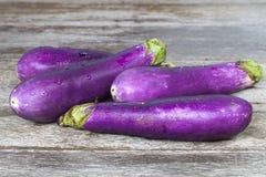 баклажаны пурпуровые Стоковое фото RF