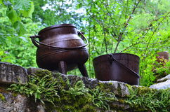 Бак вызывая чайник Стоковое Изображение