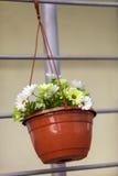 бак искусственних цветков Стоковые Изображения RF