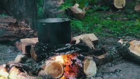 Бак на огне в лесе акции видеоматериалы