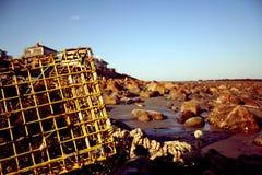 бак омара пляжа Стоковое Изображение RF