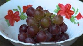 Бак покрашенных виноградин акции видеоматериалы