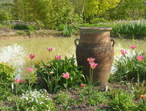бак сада цветков стоковое фото rf
