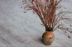 Бак с сухими высушенными цветками глиняный горшок горизонтальный Стоковое Фото