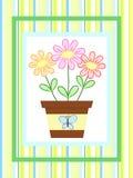 бак цветков Стоковое Изображение
