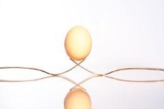 Балансируя яичко Стоковое фото RF