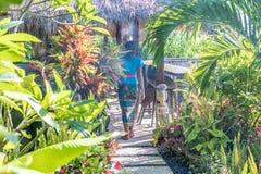 БАЛИ, ИНДОНЕЗИЯ - 21-ОЕ ЯНВАРЯ 2017: Балийские женщины в традиционном kebaya батика идя с предлагать в тропическом стоковое фото rf