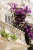 балкон цветет старое деревянное Стоковое Изображение