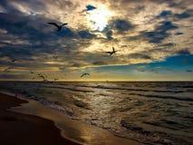 Балтийское море захода солнца Стоковое Фото