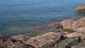 Балтийское море побило на утесах полуострова Hanko, дня в июле Финляндия сток-видео