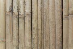 Бамбуковая вертикаль стены Стоковое Фото