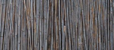 Бамбуковая деревенская старая загородка, текстура, стена, предпосылка с космосом Baner экземпляра стоковое изображение rf