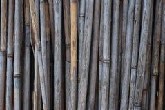 Бамбуковая деревенская старая загородка, текстура, стена, предпосылка с космосом экземпляра стоковое фото