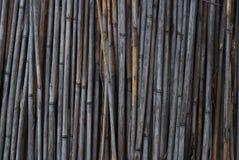 Бамбуковая деревенская старая загородка, текстура, стена, предпосылка с космосом экземпляра стоковое изображение rf