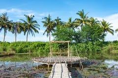Бамбуковая дорожка и бамбуковая лачуга на пруде стоковая фотография