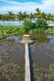Бамбуковая дорожка и бамбуковая лачуга на пруде стоковые фото