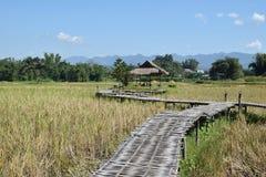 Бамбуковая дорожка моста к хате Стоковая Фотография RF