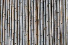 Бамбуковая загородка, винтажный стиль Стоковые Изображения