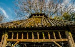 Бамбуковая крыша Стоковое Изображение