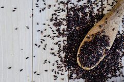 Бамбуковая ложка с органическими черными дикими рисами Стоковая Фотография