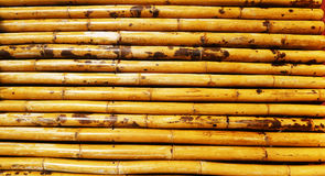 Бамбуковая палуба Стоковые Изображения
