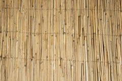 Бамбуковая предпосылка бамбуковой предпосылки Бамбуковая текстура предпосылки текстура бамбуковой предпосылки пакостная бамбукова Стоковая Фотография RF