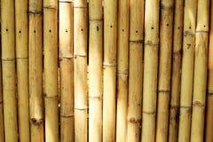 Бамбуковая предпосылка загородки Стоковое Изображение RF