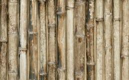 Бамбуковая предпосылка загородки Стоковая Фотография RF