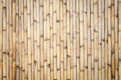 Бамбуковая предпосылка загородки стоковые изображения