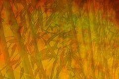 Бамбуковая предпосылка конспекта Дзэн Стоковая Фотография RF