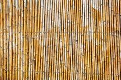 Бамбуковая предпосылка текстуры стены Стоковая Фотография RF