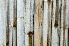 Бамбуковая предпосылка текстуры Стоковая Фотография