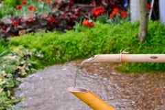 Бамбуковая сточная канава Стоковое Изображение