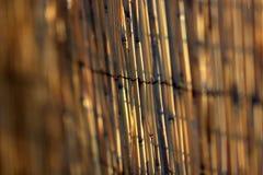 Бамбуковая текстура загородки Стоковая Фотография RF