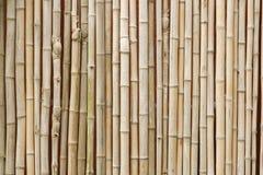 Бамбуковая текстура предпосылки в горизонтальном формате Стоковая Фотография