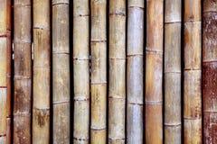 Бамбуковая текстура Стоковые Изображения