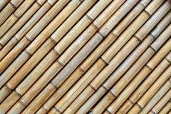 Бамбуковая текстура Стоковая Фотография