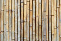 Бамбуковая текстура Стоковые Фото