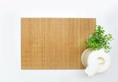 Бамбуковая циновка таблицы с малым заводом и коробкой ткани Стоковое Фото