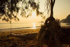 Бамбуковое качание. Стоковые Фото