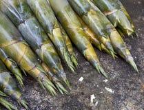 Бамбуковые всходы на бетоне Стоковые Фото