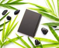 Бамбуковые лист и черная бумажная предпосылка Черный бумажный модель-макет тетради Шаблон знамени красоты курорта с местом текста Стоковое Изображение RF