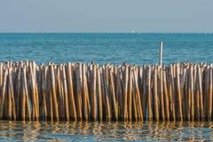 Бамбуковый барьер для защищает от размывания Селективный фокус Стоковые Фото