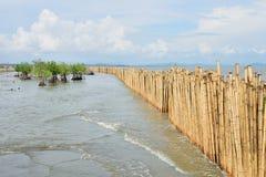 Бамбуковый барьер стоковая фотография rf